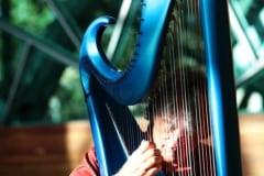 20151217_07590000_MichaelJohnson(Harp)_GothicGlow_8X12 copy